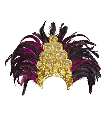 SALVADOR SHOW FEATHER HEADDRESS