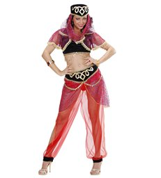 HAREM DANCER (top w/vest pants headpiece w/veil)