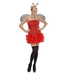 LADYBUG (dress wings antenna)