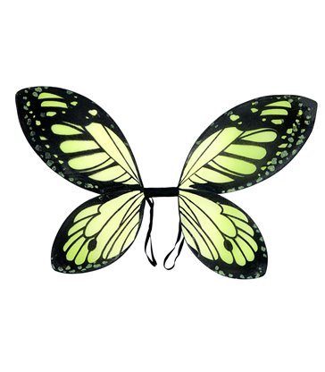 BLACK-GREEN BUTTERFLY WINGS child size