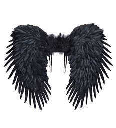 BLACK FEATHERED WINGS 80x65cm