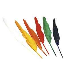 INDIAN FEATHERS - assorted colours