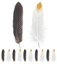 SET 12 NATIVE INDIAN FEATHERS 2 colors