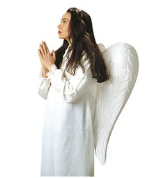 MAXI ANGEL WINGS approx 33inx30in