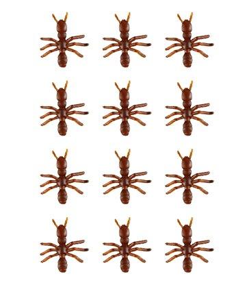 ANTS - set of 12